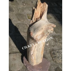 La Sculpturale Silhouette en bois flotté